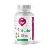 Top 4 herbs