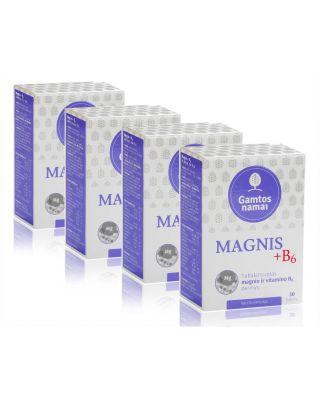 Magnis + b6 AKCIJA
