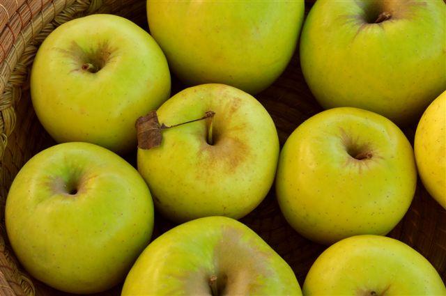 obuolių širdies nauda sveikatai)